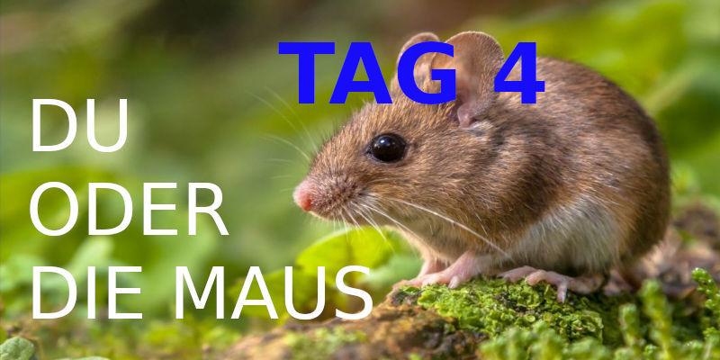TAG 4. Du oder die Maus