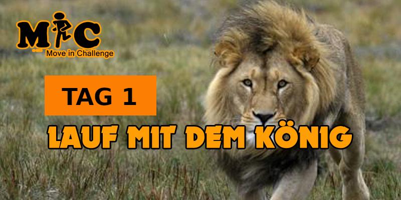 TAG 1 Lauf mit dem König