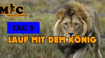 TAG 5 Lauf mit dem könig