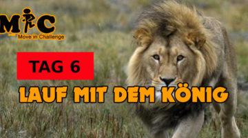 TAG 6 Lauf mit dem könig