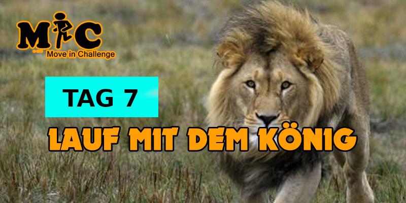 TAG 7 Lauf mit dem könig