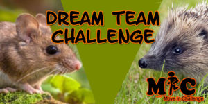 DREAM TEAM CHALLENGE BANNER