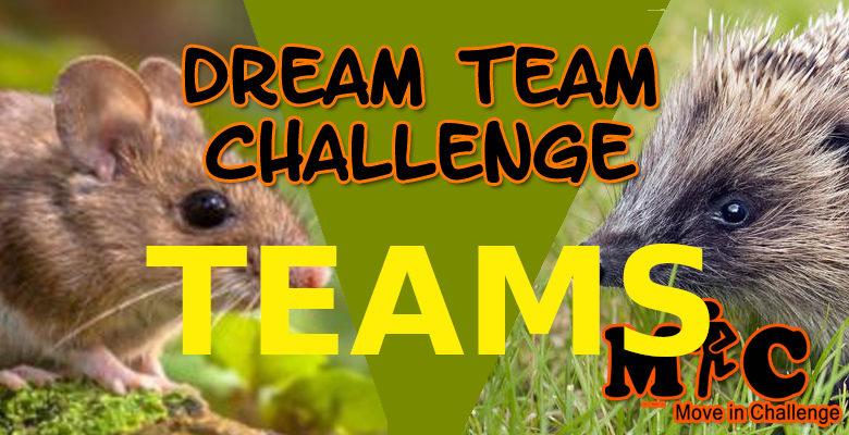 DREAM TEAM CHALLENGE TEAMS