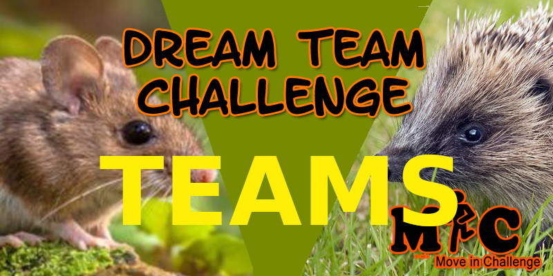 DREAM TEAM CHALLENGE TEAMS