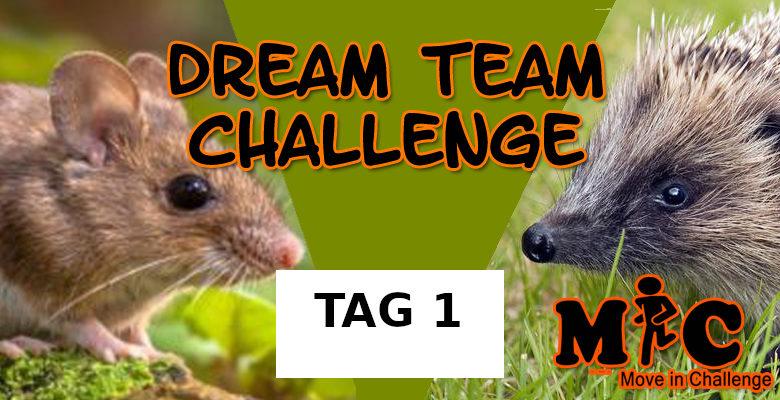 TAG 1 DREAM TEAM CHALLENGE