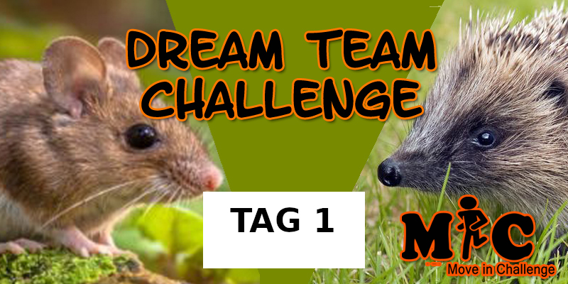 TAG 1 DREAM TEAM CHALLENGE