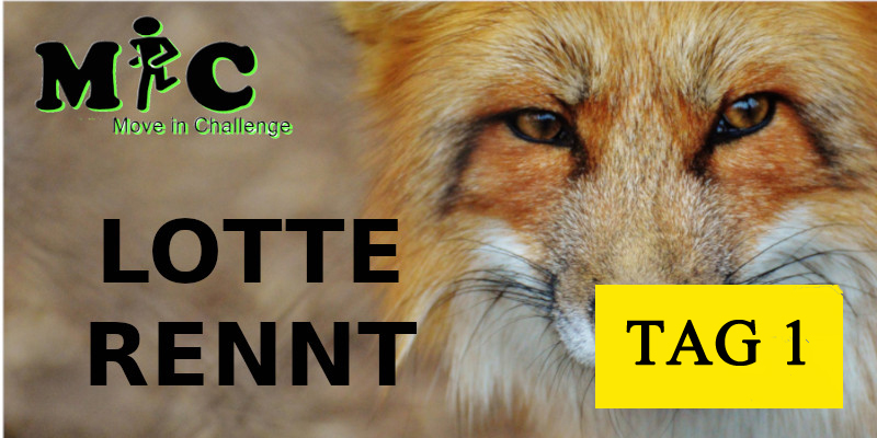 TAG 1 Lotte Rennt