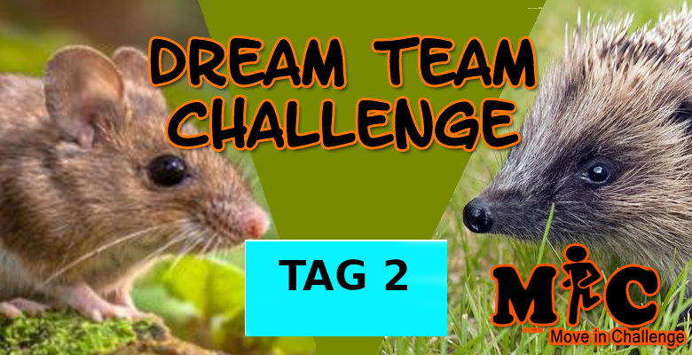 TAG 2 DREAM TEAM CHALLENGE