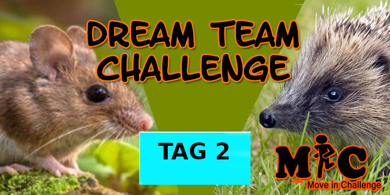 TAG 2 DREAM TEAM CHALLENGE