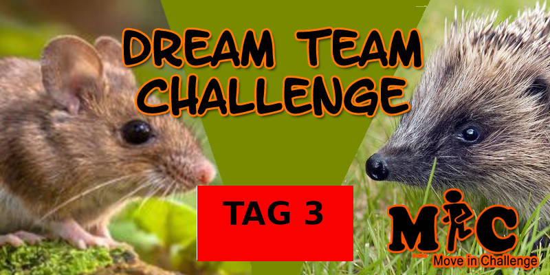 TAG 3 DREAM TEAM CHALLENGE