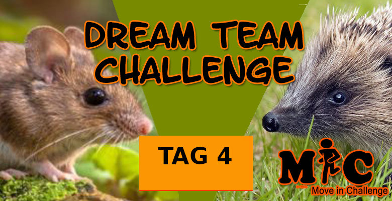 TAG 4 DREAM TEAM CHALLENGE