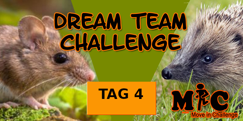 TAG 4 DREAM TEAM CHALLENGE