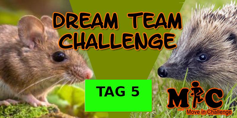 TAG 5 DREAM TEAM CHALLENGE
