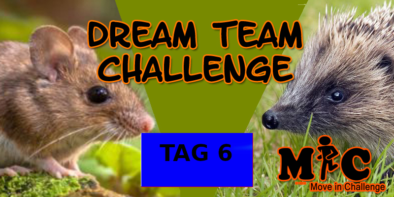 TAG 6 DREAM TEAM CHALLENGE