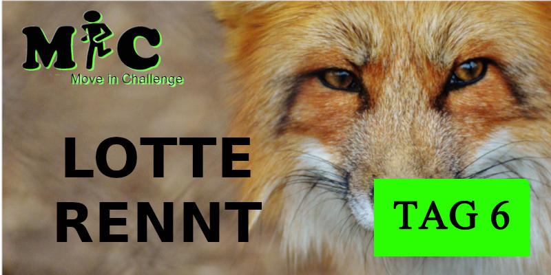 TAG 6 Lotte Rennt