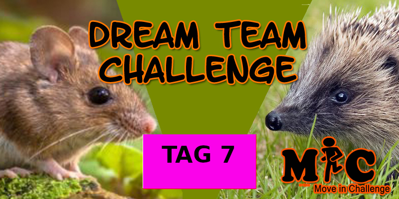 TAG 7 DREAM TEAM CHALLENGE