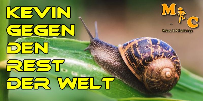 KEVIN GEGEN DEN REST DER WELT