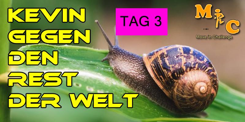 TAG 3 Kevin gegen den Rest der Welt