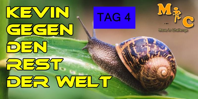 TAG 4 Kevin gegen den Rest der Welt