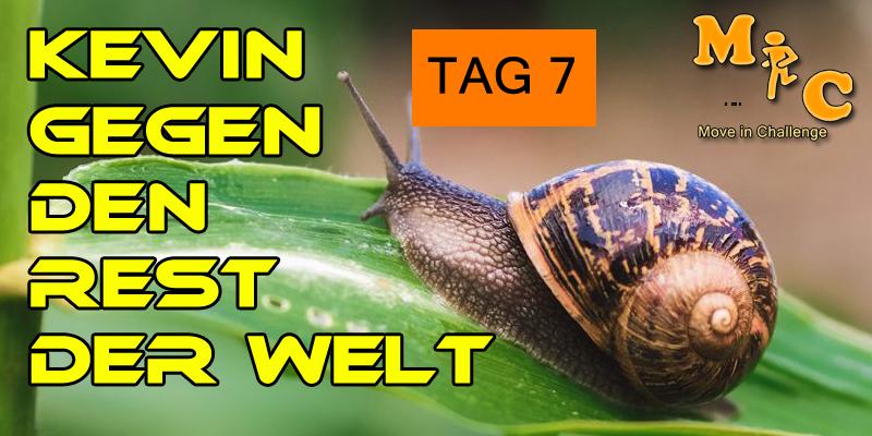 TAG 7 Kevin gegen den Rest der Welt